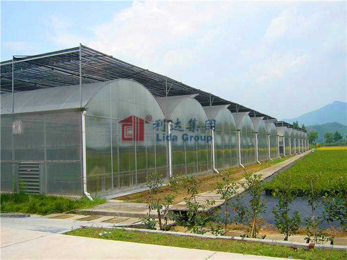 Thin film arched multi-span greenhouse